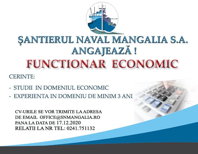 Functionar economic